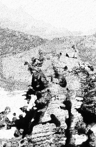 Déflagration, Xylème, 100x70cm